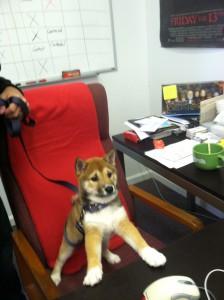 Lila at work
